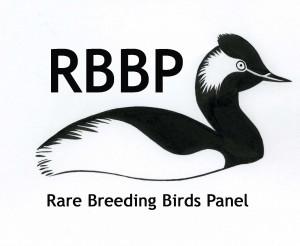 RBBP Trebuchet centred copy